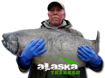 alaska_trekker_salmon