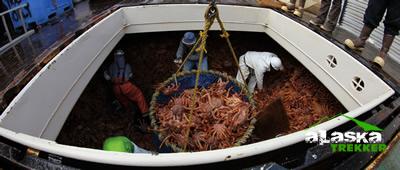 crabs_dutch_harbor