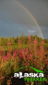 denali_rainbow