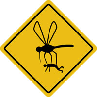 mosquitoes_in_alaska