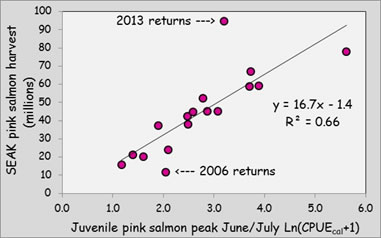 pink_salmon_forecast