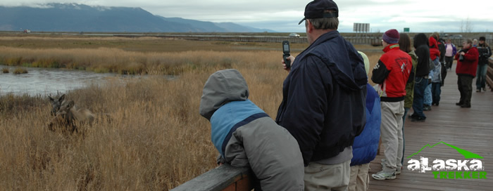 potter_marsh_viewing_platform
