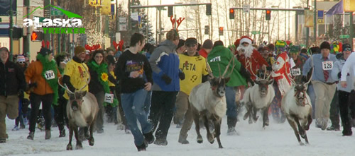 running_with_the_reindeer