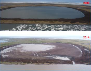 A lake on the shore of the Beaufort Sea that drained on July 5, 2014.  Image courtesy of Ben Jones.