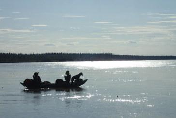 A float down Alaska's Tanana River