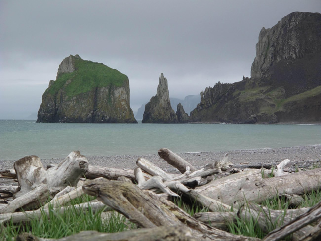 The Beauty of Alaska's St. Matthew Island
