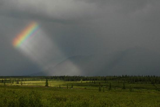 Denali National Park Rainbow